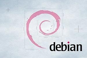 Debian下手动安装LiteSpeed+PHP+MySQL教程